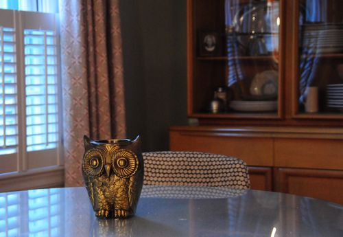Vintage Bronze Owl on Table