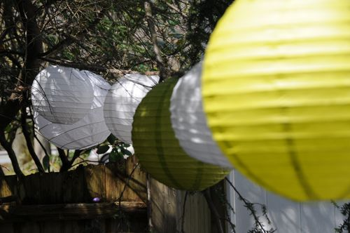 paper lanterns in trees