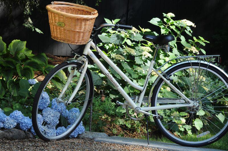 Vintage inspired bike
