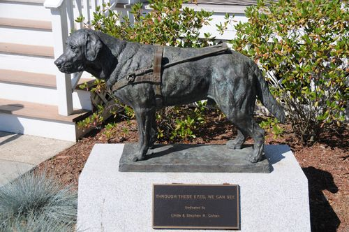Guiding eyes statue