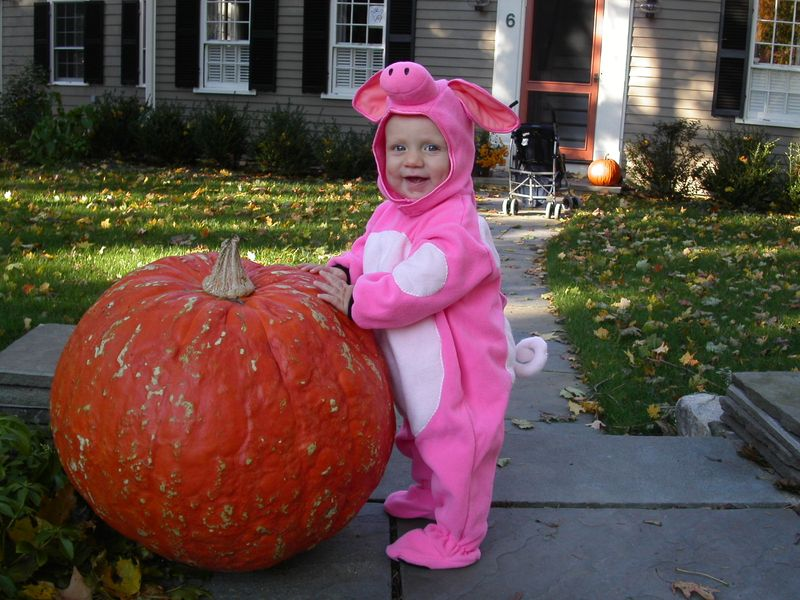 Baby in pig costume